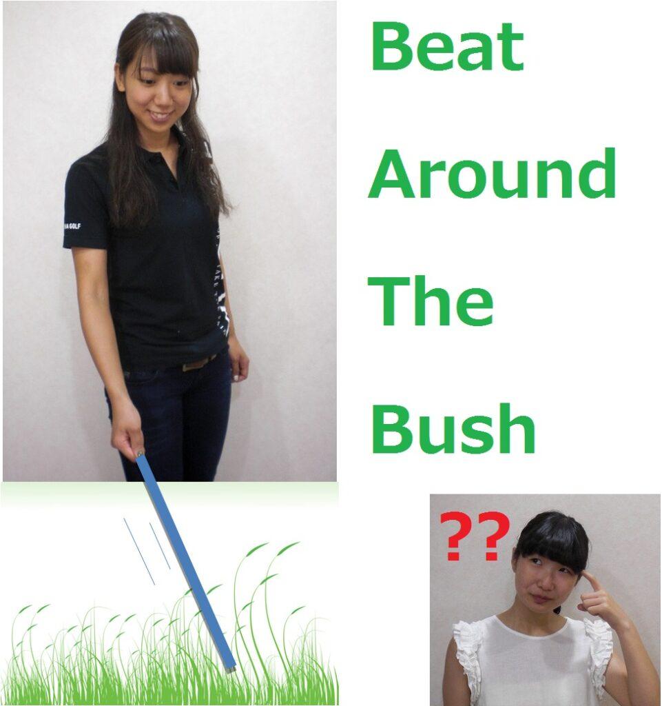 beat around the bush